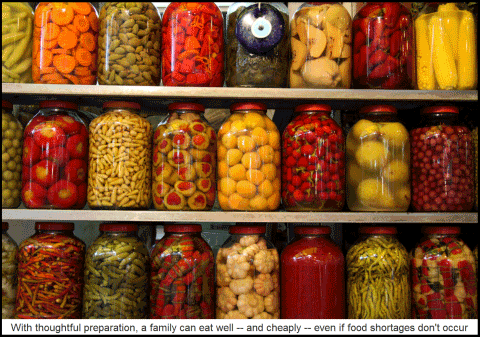 ... but when it comes to food storage I donu0027t have a clue. But I know who does. Chances are you know someone too if you have a Mormon friend.  sc 1 st  Rick Ackerman & Getting the Jump on a Possible Food Shortage -