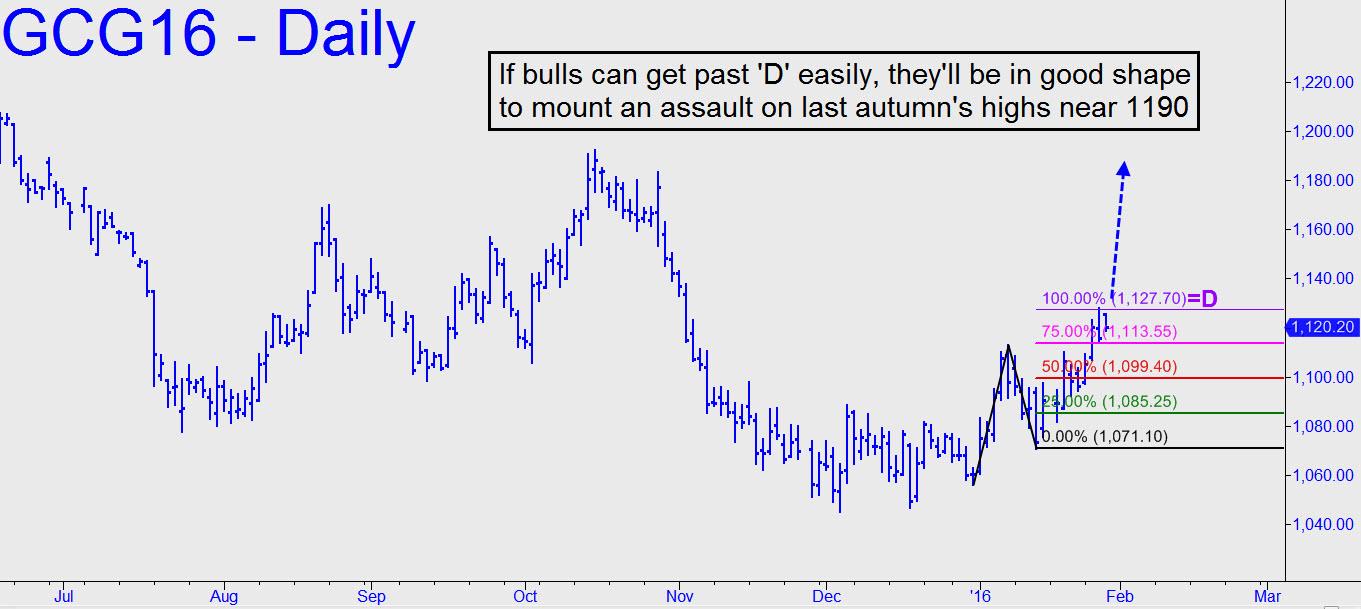 prix de l'or, de l'argent et des minières / suivi 2015 et ultérieurement - Page 5 If-gold-bulls-can