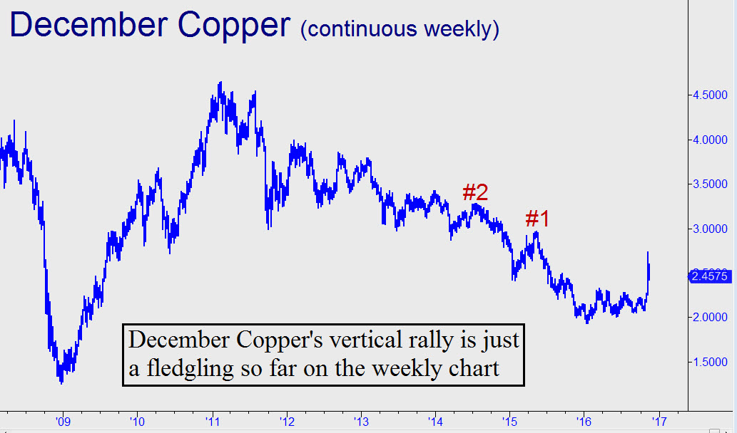 http://www.rickackerman.com/wp-content/uploads/2016/11/Coppers-vertical-rally.jpg