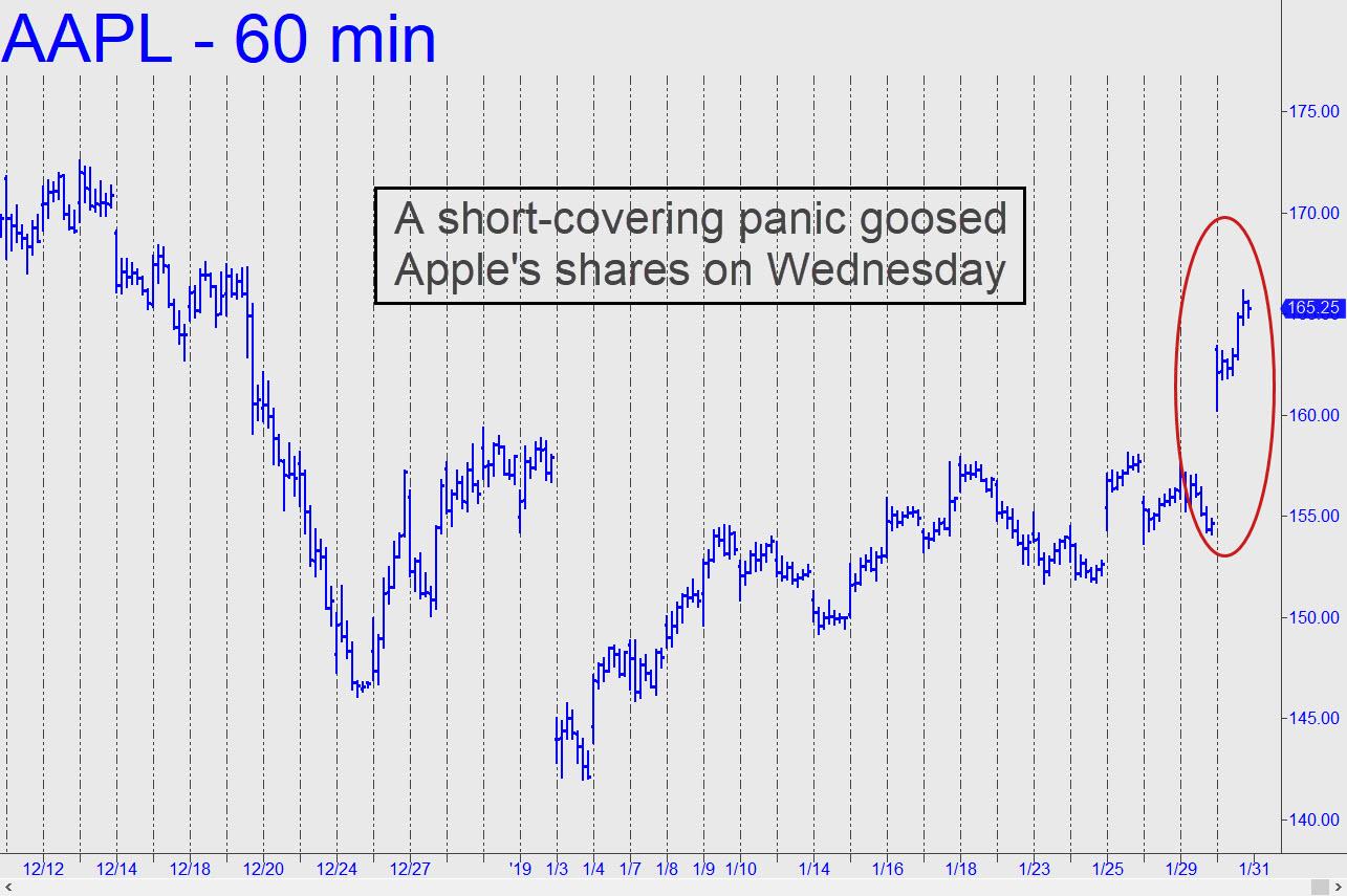 Panic-goosed-AAPL.jpg (1285�—855)
