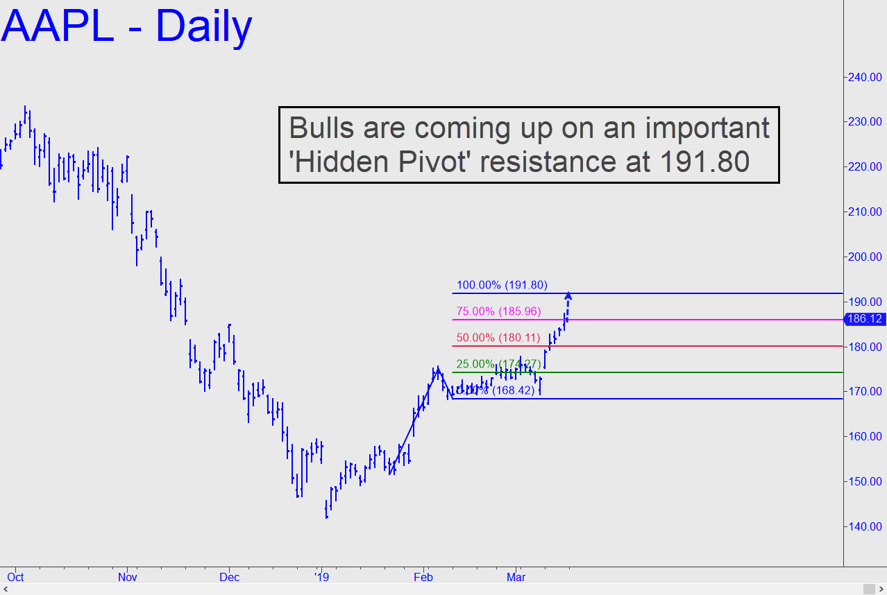 AAPL-bulls-are-coming-up-in.jpg (1278�—858)