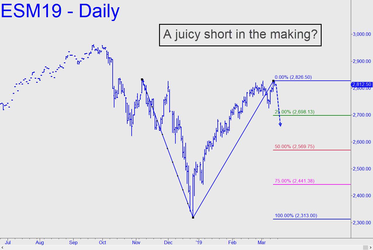 Juicy-short-in-the-making.jpg (1278�—858)