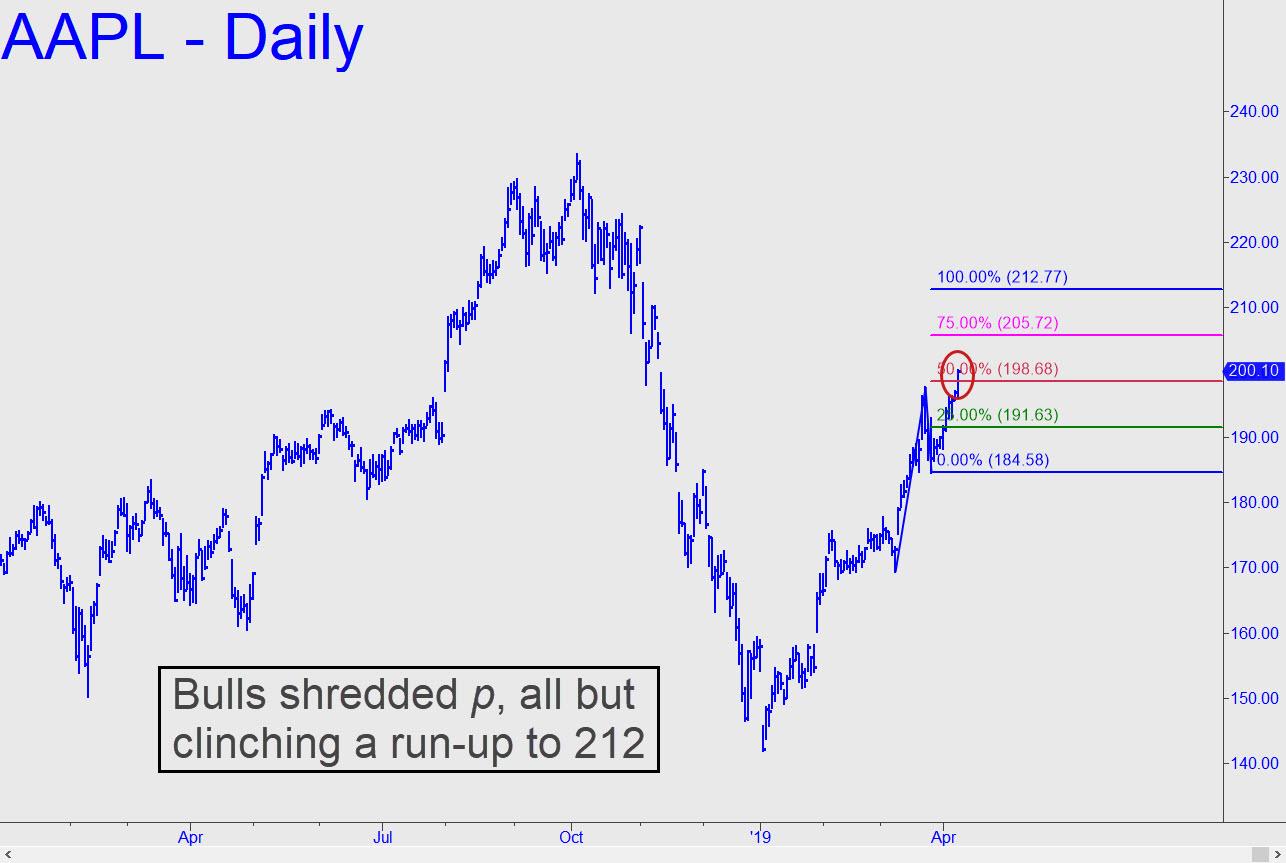 AAPL-bulls-shredded-2.jpg (1286×863)